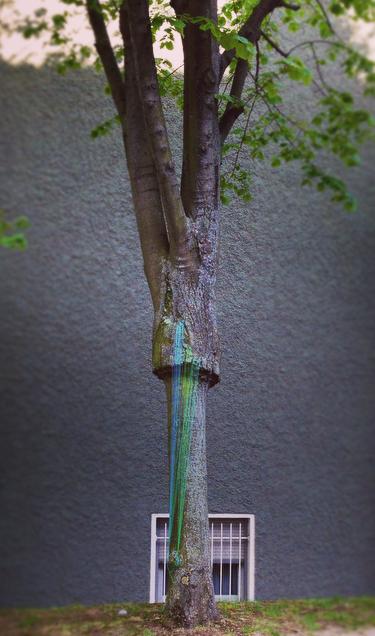 Arbre, 2015, fil Gütermann